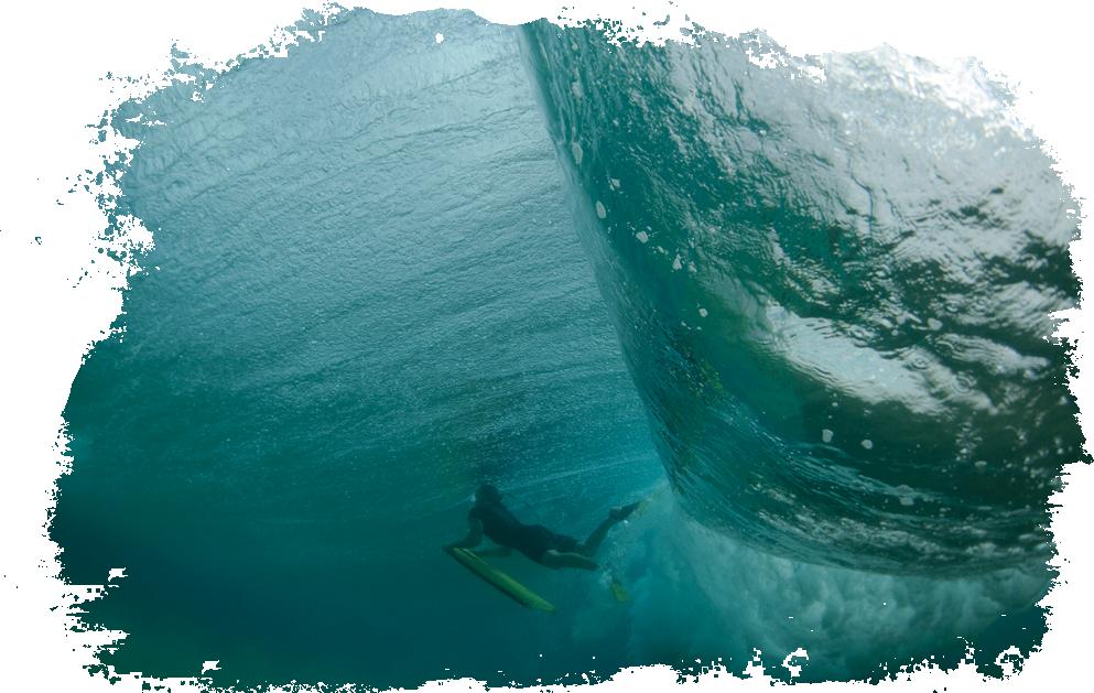 accueil-surfeur